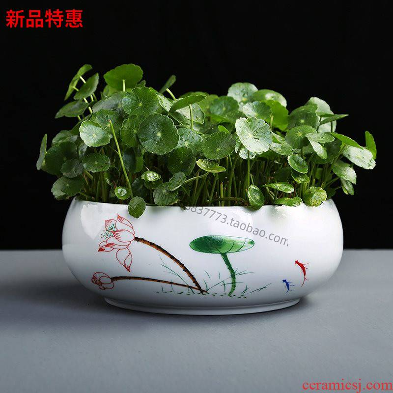 Copper grass contracted flower POTS of money grass special ceramic hydroponic large clearance daffodil water raise lotus bowl lotus leaf