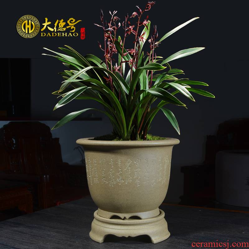 Greatness, ceramic purple sand flowerpot of large diameter with tray was special bluegrass butterfly orchid potted clivia orchid pot