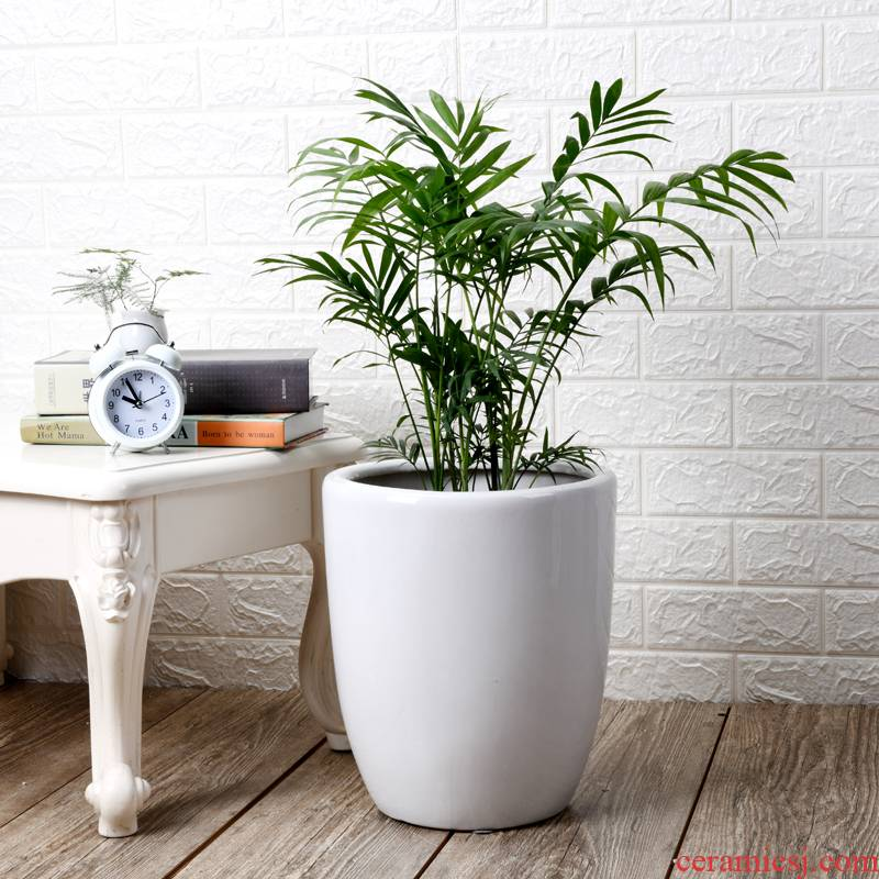 I household flowerpot ceramic oversized rich tree green plant trees wholesale bag mail sitting room interior basin of big flower pot