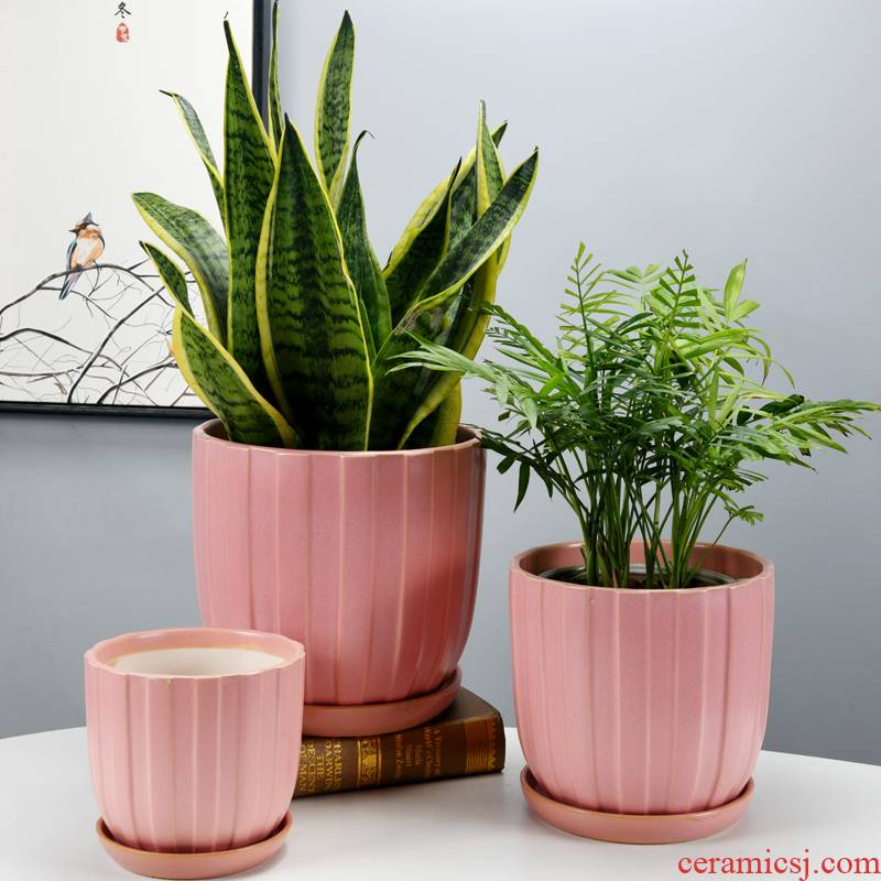 Of meat in the Nordic contracted large floor balcony flowerpot ceramics sitting room indoor orchid wholesale package mail desktop