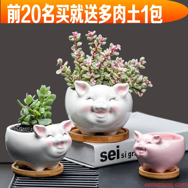 "Contracted white flower POTS ceramic creative move and lovely cartoon animals, "", fleshy desktop floret with tray"