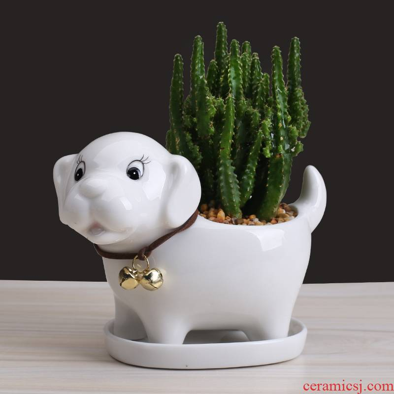 Cartoon animal flowerpot ceramic creative move more meat to contracted home sitting room plant flower implement small furnishing articles
