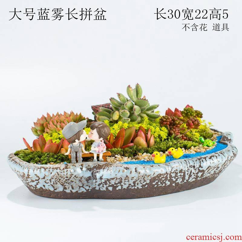 Large caliber oblong micro landscape home office more meat meat platter flowerpot ceramic plant