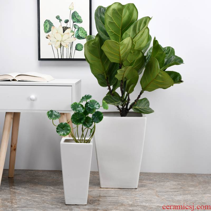 Trees flower pot ceramic oversized bag mail I and contracted sitting room rich tree tiger orchid square big wholesale flower pot