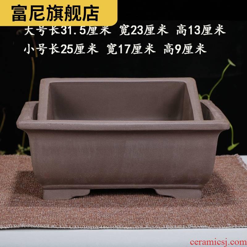 Rich, rectangular flower calamus flowerpot asparagus ceramic pot the plants indoor flowerpot bonsai pot yixing purple sand