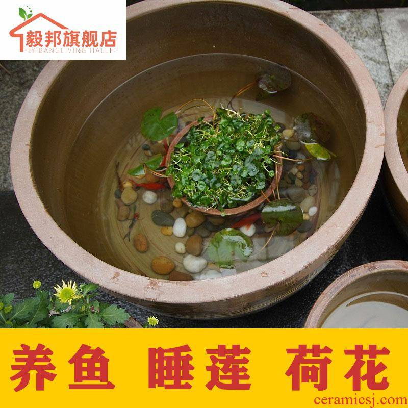 Scene home old aquarium lotus to heavy sleep courtyard GangPen fish tank large building ceramics have lotus POTS bowl lotus