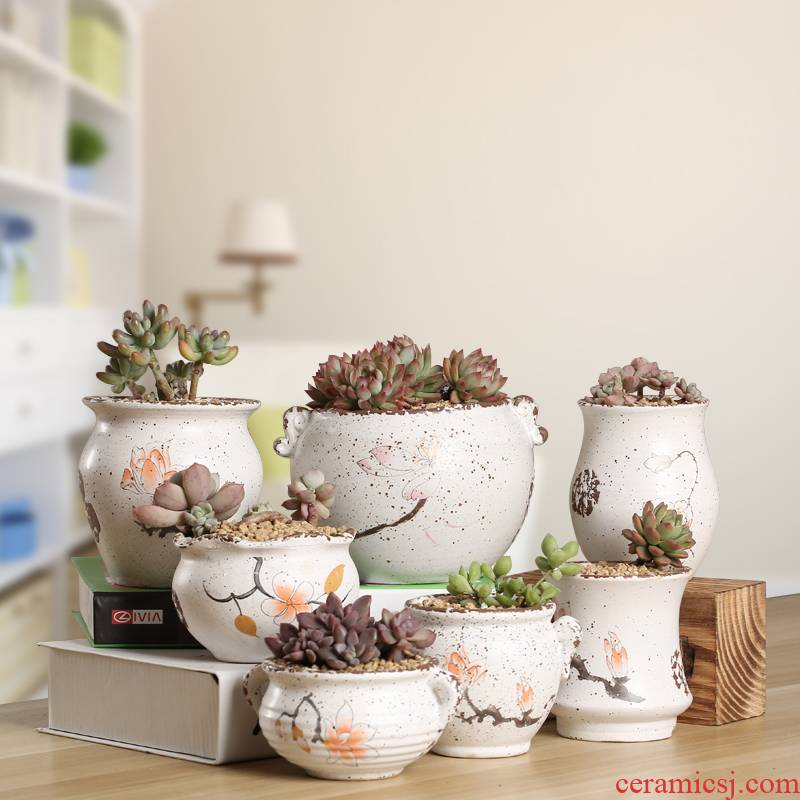 Period contracted indoor fleshy flower - pot ceramic creative Chinese wind hand - made pottery basin of flesh, flesh POTS