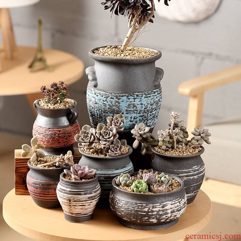 End fleshy flowerpot ceramics through pockets tao indoor flesh POTS trumpet large character lines on sale