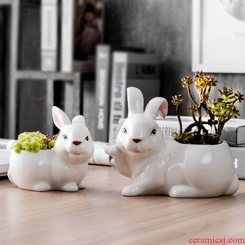 Porch make creative move hand - made ceramic flowerpot more meat small lovely white desktop flower implement rabbit potted the plants