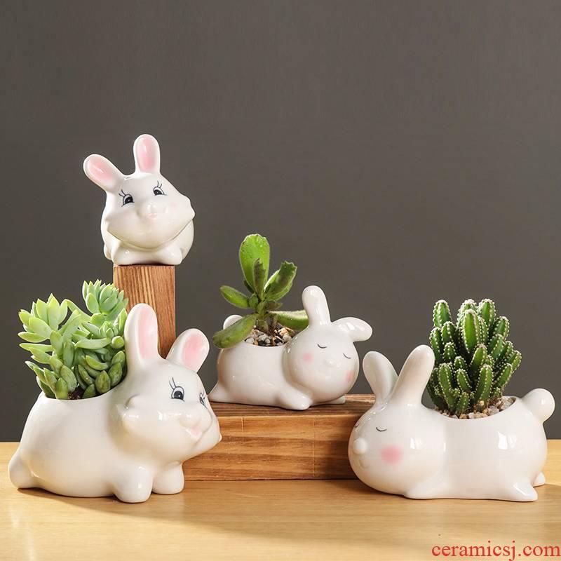 Creative cartoon animal, lovely small white rabbit ceramic flowerpot more meat desktop art flower pot plant furnishing articles