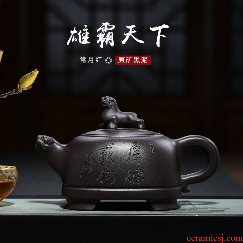 Yixing it undressed ore our black clay pot of flowers goods, in red ink cheetahs all hand teapot