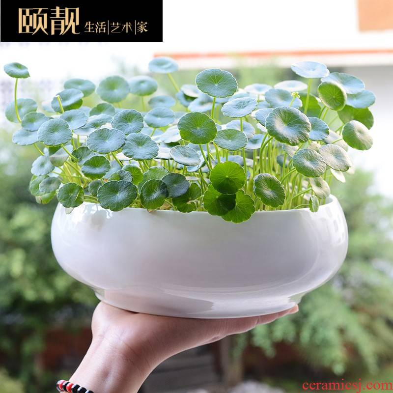 Money copper grass flower POTS ceramic clearance to use the lotus pond lily hydroponic container oversized refers to water load without holes