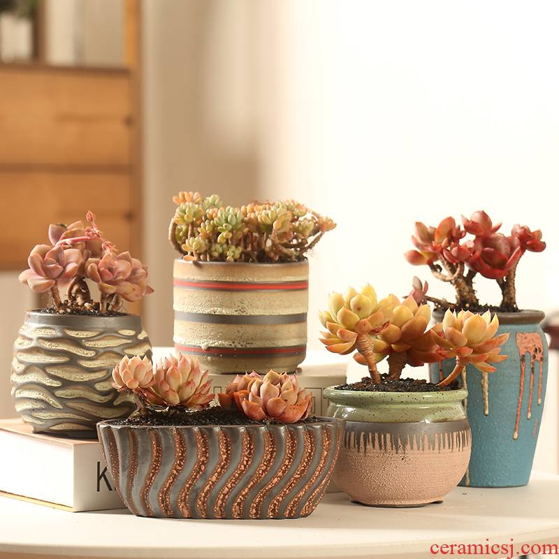 End restore ancient ways small coarse pottery large zhuang zi more meat flesh POTS of flowerpot ceramic special offer a clearance Mediterranean style
