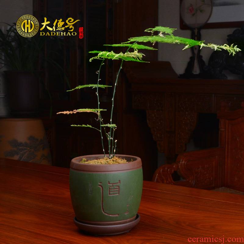 Purple sand flowerpot products rich tree asparagus flower pot in fleshy the plants indoor potted orchids yixing pottery and porcelain