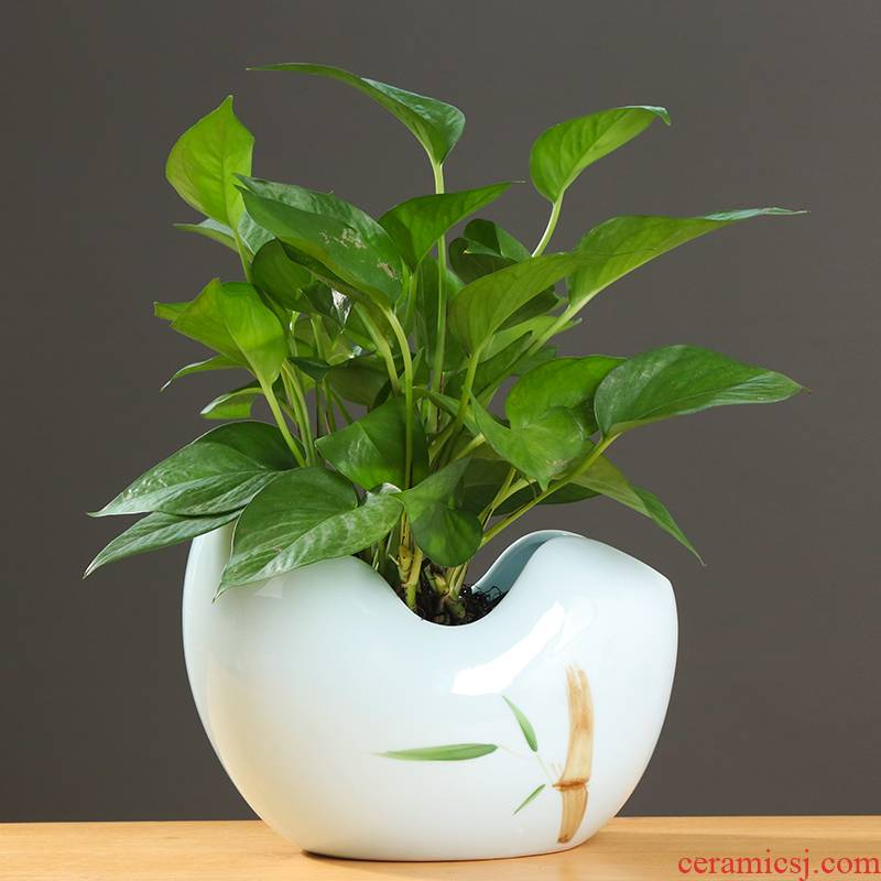 Simple ideas other grass cooper hydroponic flower pot ceramic large indoor desktop aquatic the plants vase move
