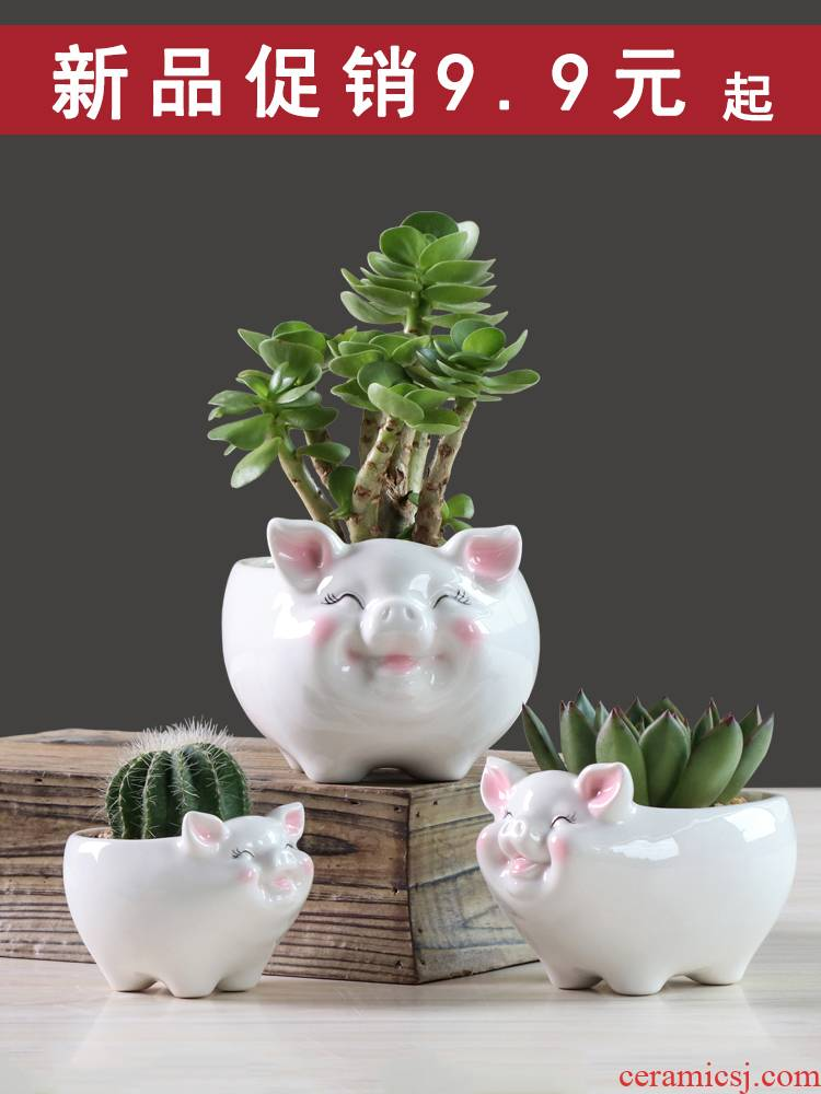 Simple cartoon fleshy flowerpot ceramic creative move, lovely pig sitting room plant white flower pot money plant