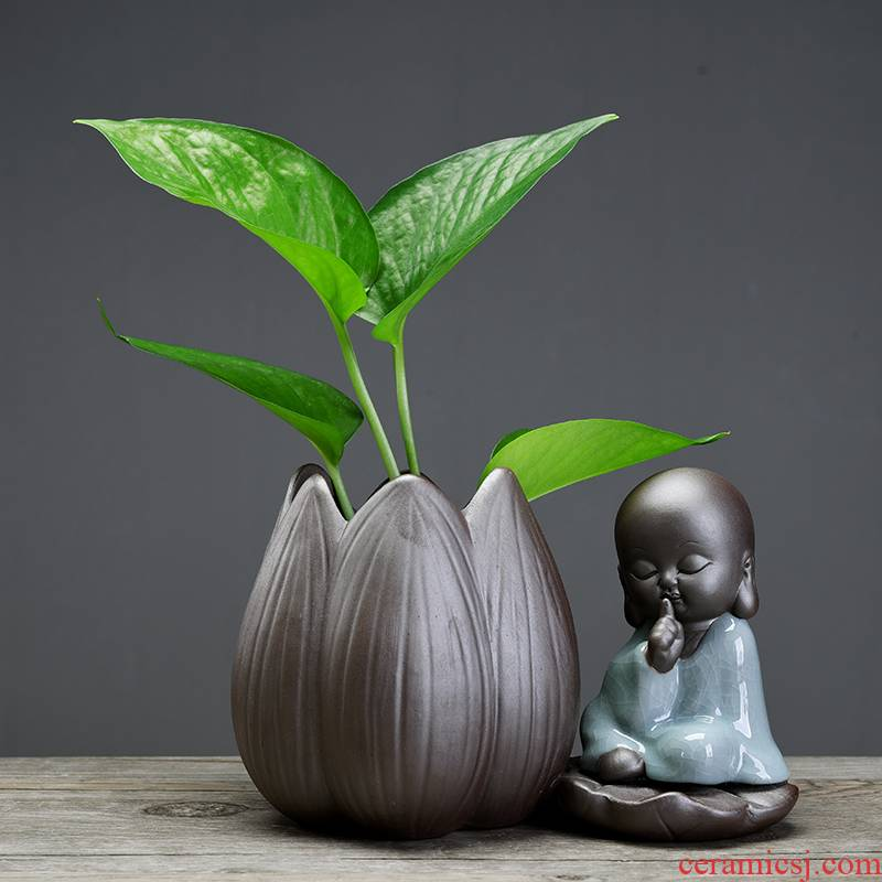 ZhuoJie pottery hydroponic plant individuality creative flower pot money plant green plant container home interior furnishing articles