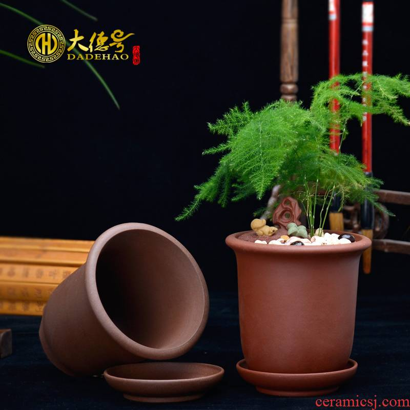 Meaty plant purple sand flowerpot yixing green plant money plant powder return money grass asparagus chlorophytum small potted tray