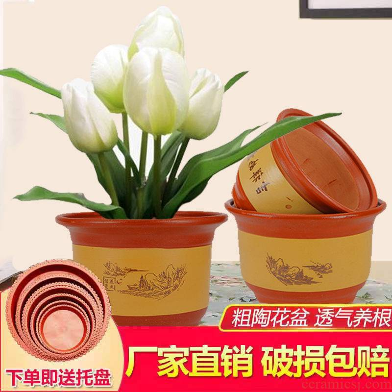 Ceramic POTS violet arenaceous red pottery clay POTS potted yew orchid sitting room high - end special ground flowerpot