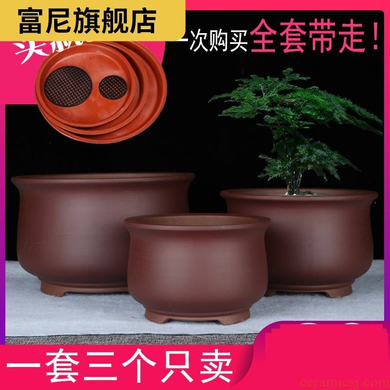 The Rich, the balcony a clearance sale, fleshy violet arenaceous basin of contracted other clivia yixing ceramic bonsai pot orchid basin