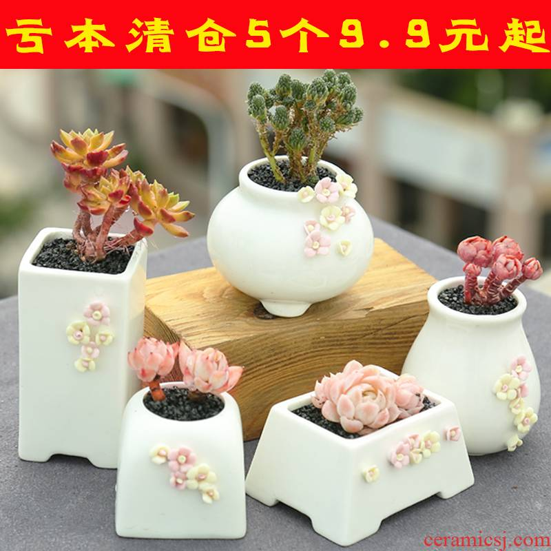Period contracted plant fleshy flowerpot ceramic special offer a clearance package mail small basin of thumb knead flowers through the big pockets