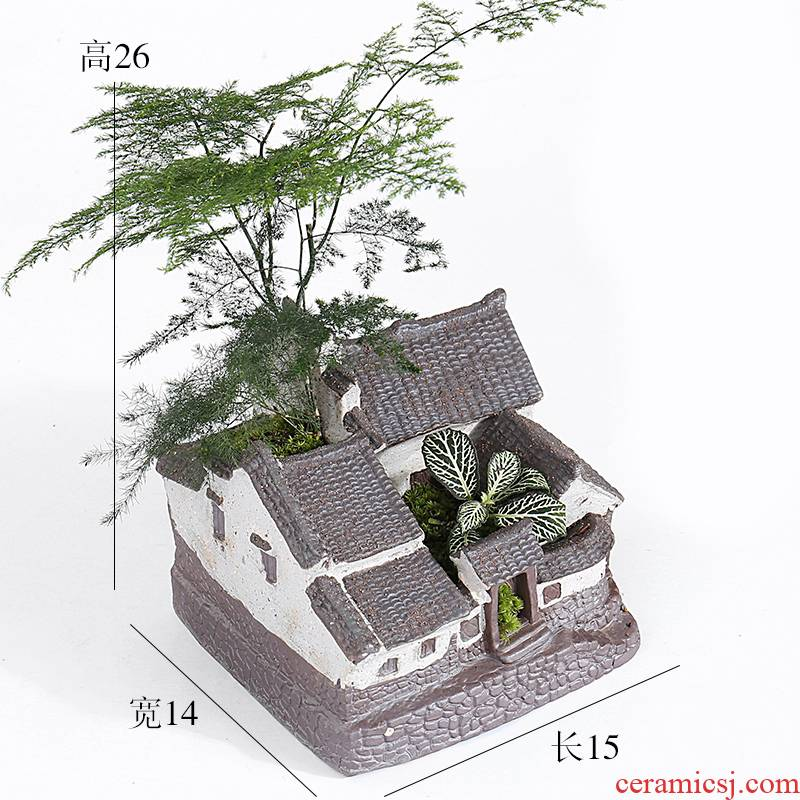 Large green asparagus creative move, lovely jiangnan water flowerpot ceramic purple small house more meat meat the plants
