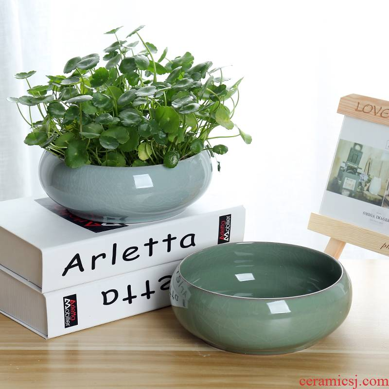 Ceramic large leaf grass daffodils copper pot lotus bowl lotus contracted nonporous hydroponic container more than meat