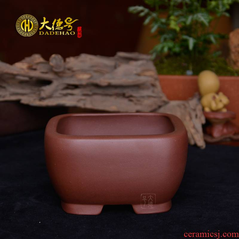 Purple sand flowerpot boutique small bonsai pot yixing Purple clay rounded square basin calamus fleshy flower pot flowers, green plant