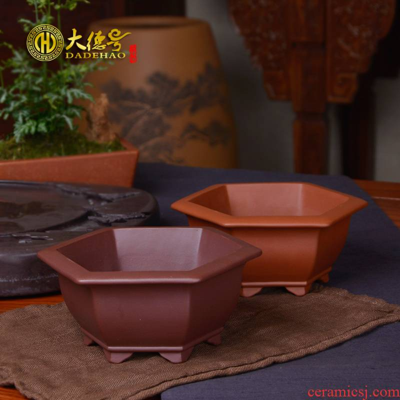Greatness, boutique purple sand flowerpot six - party bonsai flowers, green potted small basin to mesh