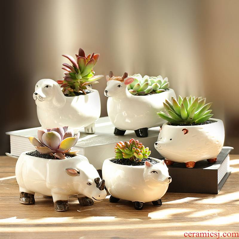 Platinum jade ceramic flower POTS of flowerpot cartoon animals more meat the plants more creative move manual coloured drawing or pattern white porcelain basin
