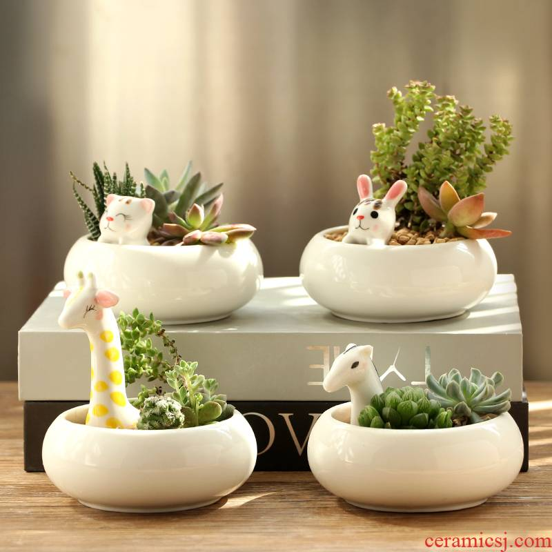 Platinum jade fleshy flowerpot cartoon ceramic flower pot indoor desktop express giraffe charming animals potted the plants