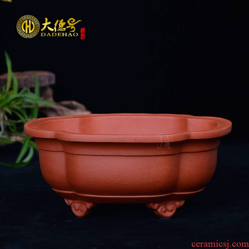 Violet arenaceous basin of rectangular boutique bonsai meaty plant potted balcony haitang flowerpot pack the post office