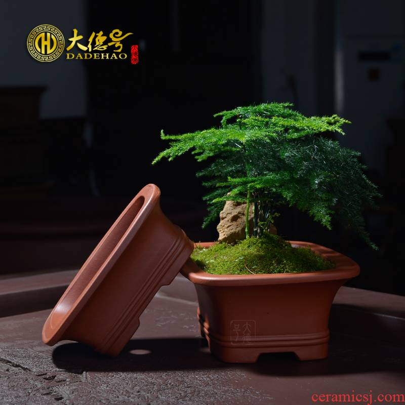 Asparagus pot of purple sand flowerpot yixing boutique small bonsai pot size rectangular fleshy green plant calamus basin