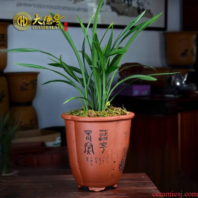 Orchid basin clivia bluegrass its four seasons facilities. We chunlan yixing purple sand flowerpot high - quality goods indoor green plant pot