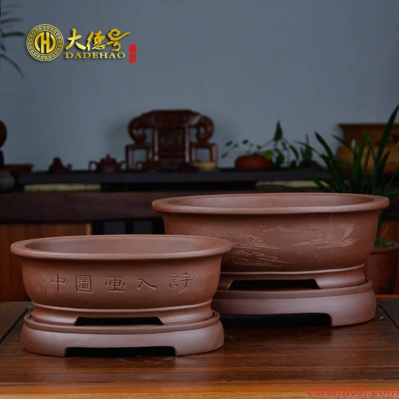 Bonsai pot yixing purple sand flowerpot with optimum size of pot water pans the ellipse, the plants banyan five hieroglyphics flos mume