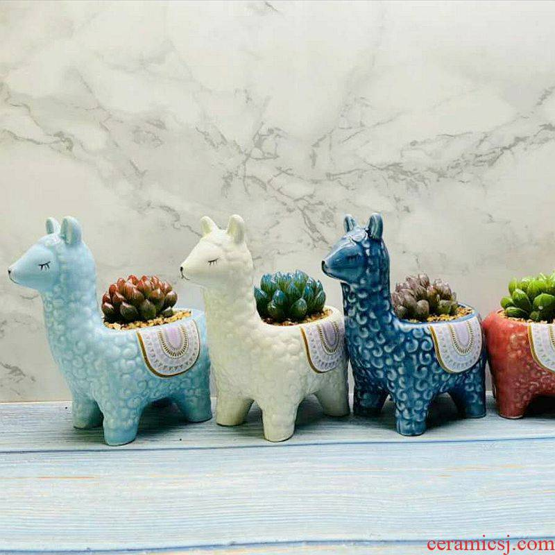 Blue creative move alpaca small express it in mini thumb animal flowerpot ceramic furnishing articles long square more than meat