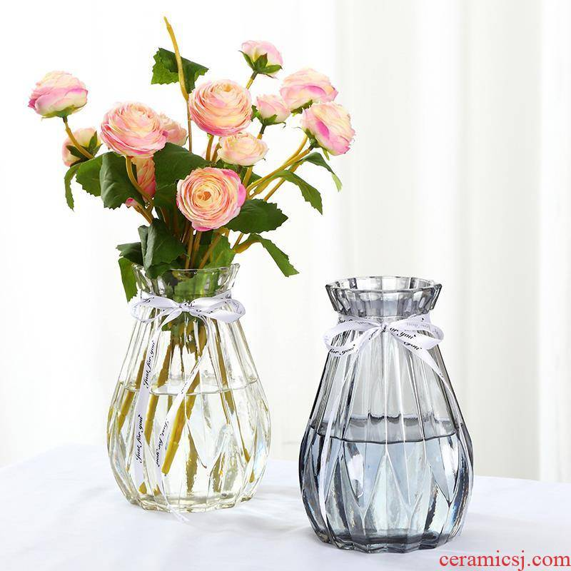 Flower arranging transparent glass home furnishing articles hydroponic dried flowers of northern new sitting room adornment small pure and fresh and large vases, pottery and porcelain