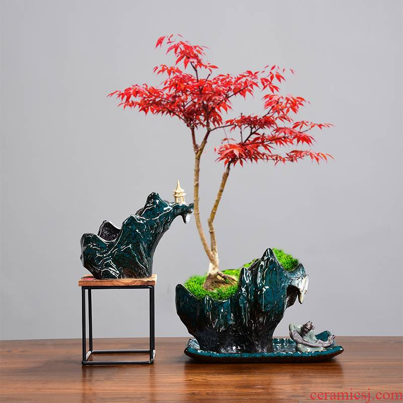 Asparagus red maple tree special creative new flower pot landscape combined with the base preferential elder brother up penglai pine the lantern