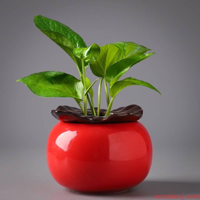 Copper money plant grass hydroponic lotus basin ceramic creative move special offer a clearance without hole water raise refers to flower pot the plants