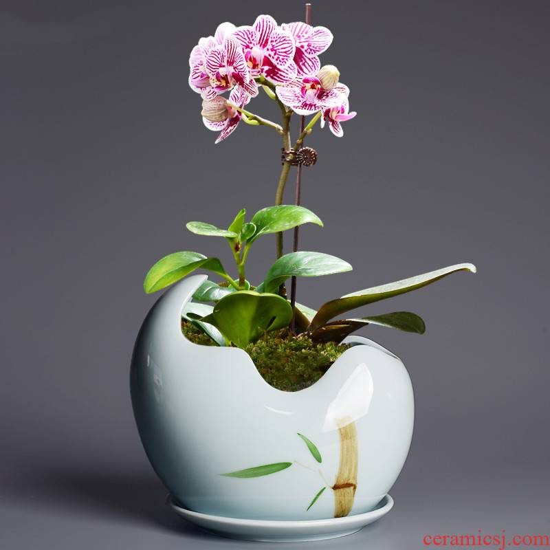Creative move celadon hydroponic vessel aquatic plant bowl lotus money plant daffodils copper grass special pot ceramic flower pot