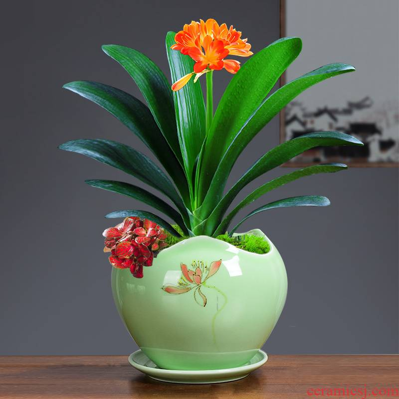 Ceramic hand - made of cape jasmine flower pot the plants osmanthus creative other special large green potted tray
