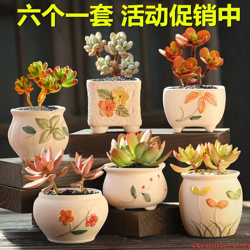 Fleshy flowerpot ceramic creative move meat meat plant kind contracted coarse pottery breathable special offer a clearance flowerpot