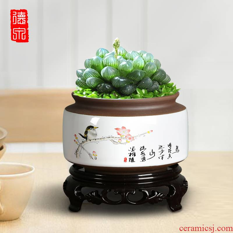 Old running the flowerpot more meat small creative move mage sexual special offer a clearance jingdezhen ceramic purple asparagus with tray