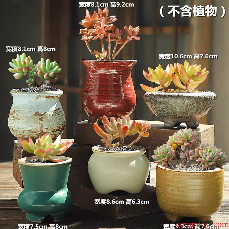 The Fleshy flower pot special offer a clearance of large diameter violet arenaceous coarse pottery air suction creative move meat meat little old running the flowerpot