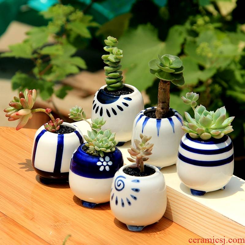 Blue and white thumb meat flowerpot ceramic indoor small stones form creative mini round special offer a clearance flower pot