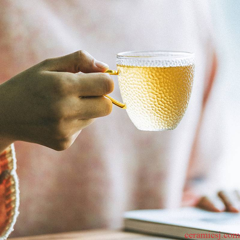 Vegetation school Japanese hammer glass cup with the heat - resistant glass ultimately responds cups of coffee cup tea cup