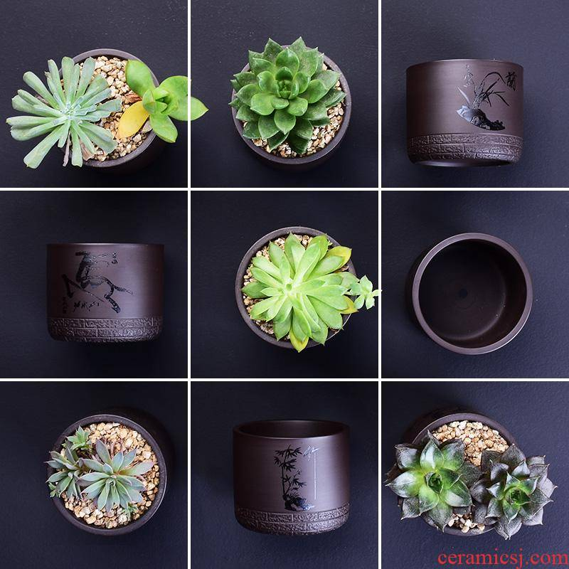 Purple sand flowerpot more meat small creative custom coarse pottery ceramic the plants breathe freely contracted household specials flesh POTS