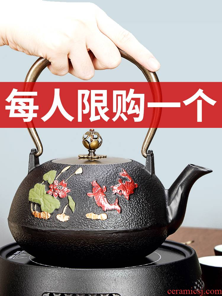 Tang Feng manually cast iron pot of tea is special paint boiling kettle brother maker household kung fu tea stove kettle