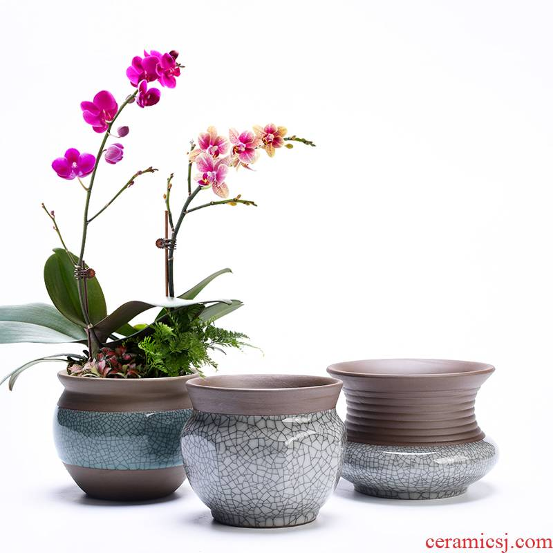 Retro elder brother up with ceramic household meaty plant flower pot coarse pottery breathable clay purple butterfly orchid basin of chlorophytum