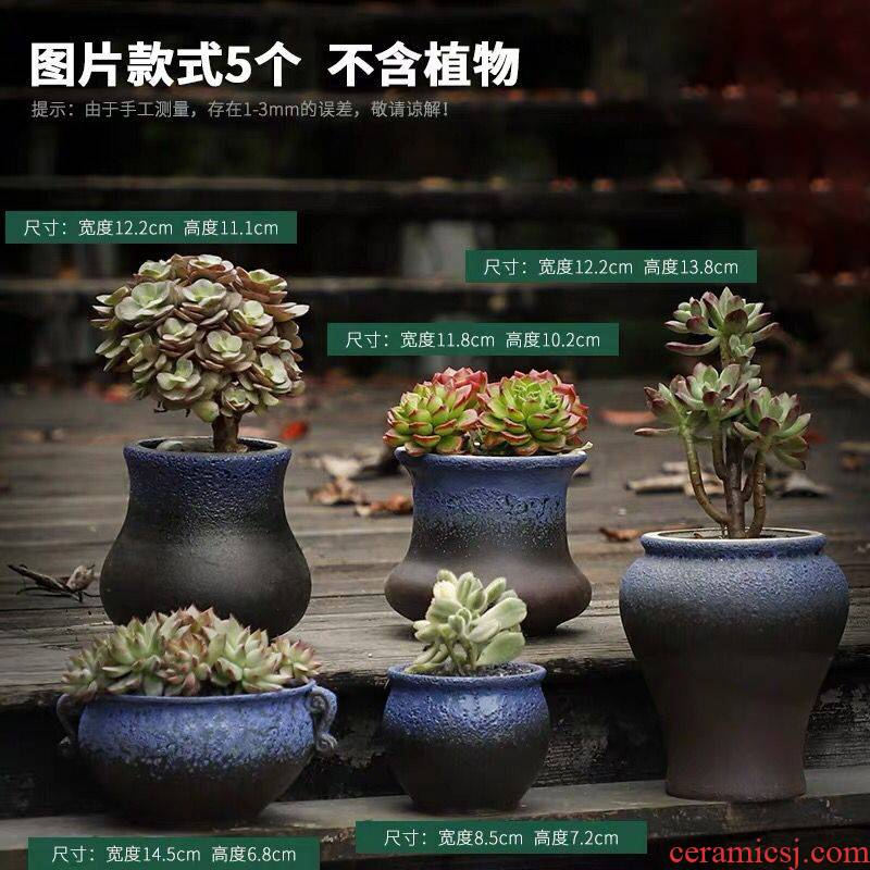 Fleshy flowerpot ceramic package mail creative move coarse pottery retro large caliber meat meat the plants potted special offer a clearance
